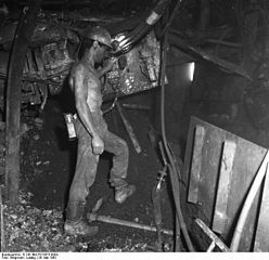 ruhr coal seam - evidence for vast eons